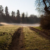 Morning mist. Early morning mist in the fields royalty free stock images