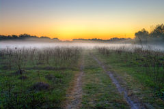 Morning mist and field road Stock Images
