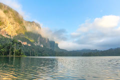 Morning mist on the forested cliffs by the lake Cheow Lan Stock Images