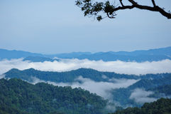 Morning mist at Kaeng Krachan Royalty Free Stock Image