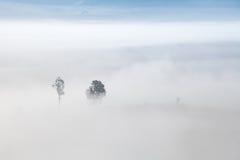 Morning mist at Khao-kho Phetchabun,Thailand Stock Photo