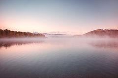 Morning Mist on the Lake Stock Photography