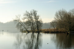 Morning Mist on the Lake. View over a lake through the thinning morning mist Stock Image