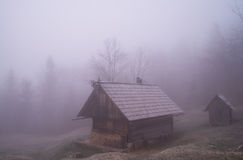 Morning mist on meadow Vogar Royalty Free Stock Photography