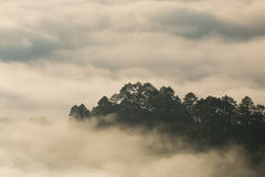 Morning mist and mountain Royalty Free Stock Image