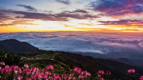 Morning Mist with Mountain ,Sunrise and sea of mis.  Stock Photo