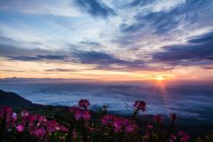 Morning Mist with Mountain ,Sunrise and sea of mis.  Royalty Free Stock Photos