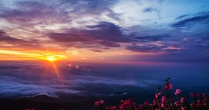 Morning Mist with Mountain ,Sunrise and sea of mis.  Royalty Free Stock Photo