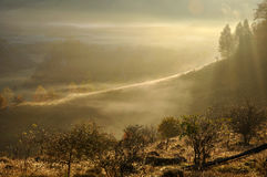 Morning mist in the mountains Royalty Free Stock Images