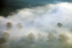 Morning mist on Mures Valley Stock Images