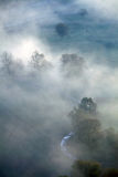Morning mist on Mures Valley Royalty Free Stock Photography