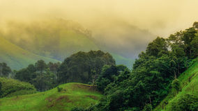 Morning mist from Nan province Stock Photography