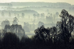 Morning mist - North Yorkshire - England. Early morning mist in February in North Yorkshire in Great Britain Stock Images
