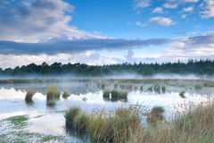 Morning mist over bog Stock Image
