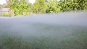 Morning mist over the grass field. Smoke over meadow. Magic summer morning stock footage