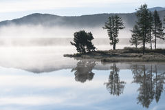 Morning mist over the lake Royalty Free Stock Photos