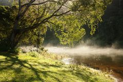 Morning mist. Over Lake Tinaroo in the Tablelands, North Queensland Royalty Free Stock Image