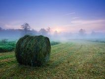 Morning Mist over the landscape Stock Image