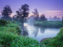 Morning Mist over the landscape Royalty Free Stock Photos