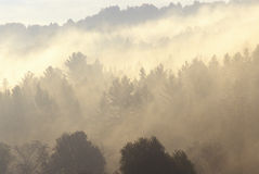 Morning mist over mountains, VT Stock Photos