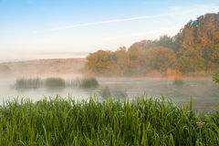 Morning Mist over the River Royalty Free Stock Photo