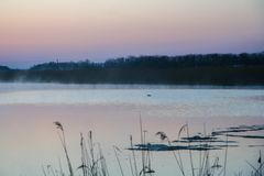 Morning mist over the water. In the Ukrainian steppe. Zaporozhye region, Ukraine. April 2004 Royalty Free Stock Photography