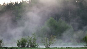 Morning mist over the water Royalty Free Stock Photos