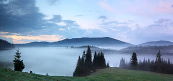 Morning mist panorama. A panorama of the misty sunrise from the Apuseni natural park, Romania Stock Image
