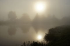 Morning mist on the pond. Landscape with the sunrise mist and reflected sun in the water Royalty Free Stock Image