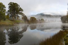 Morning mist reflect on the pond. South Africa stock images