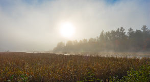 Morning mist rises off warm water into cool air on Corry lake, Ontario, Canada. Royalty Free Stock Photography