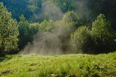 Morning mist rising under the first sun rays in a meadow in the Romanian countryside. Morning mist rising under the first sun rays in a meadow with trees in the royalty free stock images