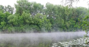 Morning Mist On The River. Morning mist on the calm river in summer morning stock video
