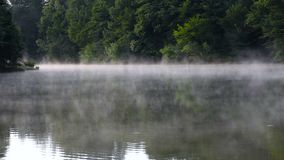 Morning mist in the river. Morning mist on the river, backlight, summer morning stock video footage