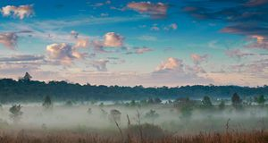 Morning mist and sky. Stock Images