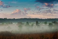 Morning mist and sky. Royalty Free Stock Photos