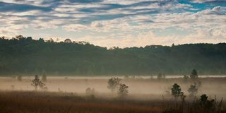 Morning mist and sky. Royalty Free Stock Photography