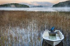 Rowboat in morning mist. A small harbor with rowboat in a lake as the morning mist is rising Stock Image