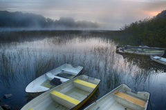 Rowboats in morning mist. A small harbor with rowboats in a lake as the morning mist is rising Stock Photo