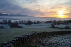 Morning Mist at Sunrise Royalty Free Stock Image