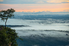 Morning Mist and Sunrise, Cliff, Tropical Mountain Stock Photo