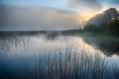 Morning mist at sunrise. Sunrise with mist over a calm lake Royalty Free Stock Images