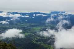 Morning Mist at Tropical Mountain. View of forest on Morning Mist at Tropical Mountain Range after rain Stock Images