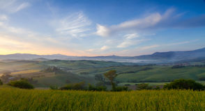 Morning mist in Val d'Orcia, San Quirico, Italy Royalty Free Stock Images