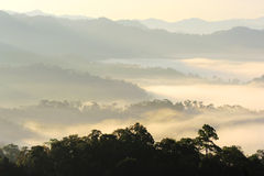 Morning mist in valley Stock Images