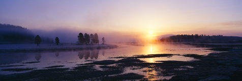 Morning mist at Yellowstone National Park Royalty Free Stock Images