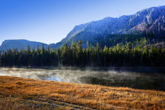 Morning mist at Yellowstone National Park, Wyoming Stock Photography