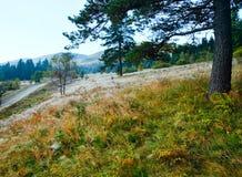 Morning misty autumn mountain landscape Royalty Free Stock Images