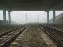 Morning misty on road. Early year in the morning dense fog fell on roads Stock Image