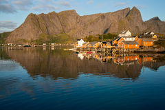 Morning mood in Reine Stock Photography